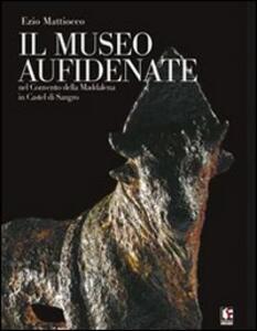 Il Museo Aufidenate. Nel Convento della Maddalena in Castel di Sangro