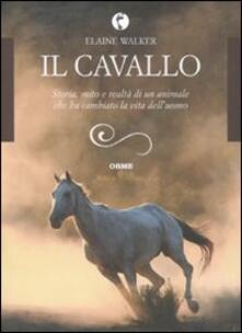 Radiospeed.it Il cavallo. Storia, mito e realtà di un animale che ha cambiato la vita dell'uomo Image