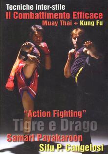 Radiospeed.it Action Fighting. Tigre e drago Image