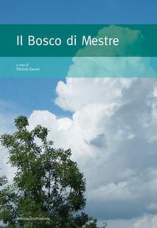 Radiosenisenews.it Il bosco di Mestre Image