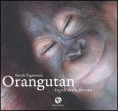 Orangutan. Angeli della foresta