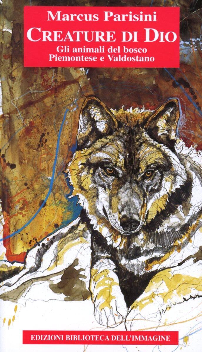 Creature di dio gli animali del bosco piemontese e - Armatura dell immagine del dio ...