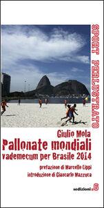 Pallonate mondiali vademecum per Brasile 2014