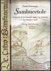 Sambucetole. Cronache di un castello sulla via Amerina tra Amelia e Todi. Con CD-ROM