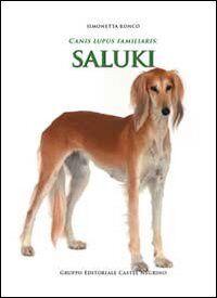Canis lupus familiaris. Saluki