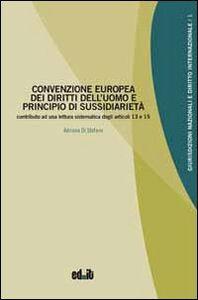 Convenzione europea dei diritti dell'uomo e principio di sussidiarietà. Contributo ad una lettura sistematica degli articoli 13 e 35