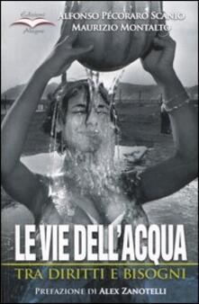 Le vie dell'acqua. Tra diritti e bisogni - Alfonso Pecoraro Scanio,Maurizio Montalto - copertina