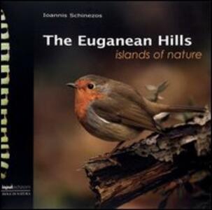 The Euganean hills
