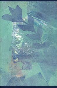 Dante Alighieri. Commedia con il commento di Benvenuto da Imola nella traduzione di Giovanni Tamburini - copertina