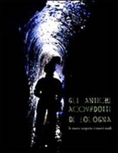 Gli antichi acquedotti di Bologna. I nuovi studi, le nuove scoperte