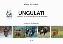 Antondemarirreguera.es Ungulati. Capriolo, cervo, daino, muflone e cinghiale Image