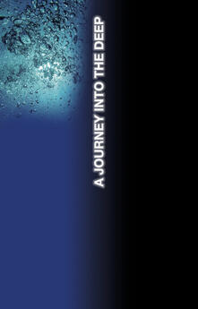 A journey into the deep. Ediz. limitata - John Goldberger - copertina