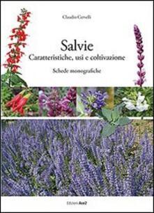 Criticalwinenotav.it Salvie. Caratteristiche, usi e coltivazione Image