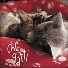Voluntariadobaleares2014.es Che gatti. Con gadget Image