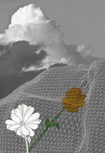 Fiore d'ombra