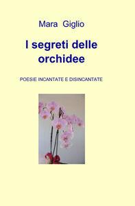 I segreti delle orchidee
