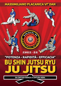 Bu Shin Jutsu Ryu. Ju jitsu. Da cintura bianca a cintura nera