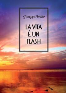 La vita è un flash