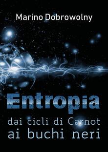 Radiospeed.it Entropia: dai cicli di Carnot ai buchi neri Image