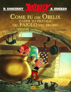 Come fu che Obelix cadde da piccolo nel paiolo del druido. Asterix