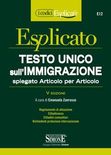 Antondemarirreguera.es Testo Unico sull'immigrazione spiegato articolo per articolo Image