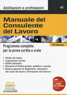 Daddyswing.es Manuale del consulente del lavoro. Programma completo per la prova scritta e orale Image