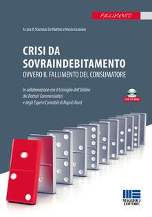 Filmarelalterita.it Crisi da sovraindebitamento. Con CD-ROM Image