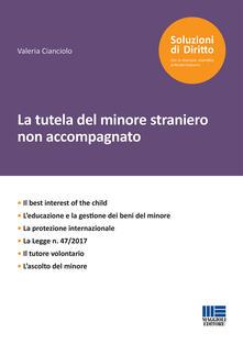 Librisulladiversita.it La tutela del minore straniero non accompagnato Image
