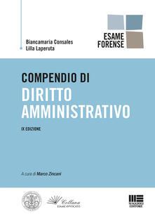 Promoartpalermo.it Compendio di diritto amministrativo Image