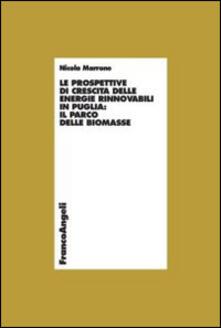 Winniearcher.com Le prospettive di crescita delle energie rinnovabili in Puglia: il parco delle biomasse Image