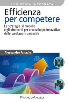 Efficienza per competere. La strategia, il modello e gli strumenti per uno sviluppo innovativo delle prestazioni aziendali.pdf