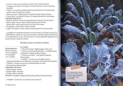 Più orto che giardino. Come coltivare verdure felici e fiori gentili - Simonetta Chiarugi,Camilla Zanarotti - 2