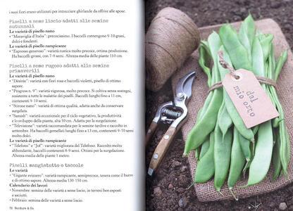 Più orto che giardino. Come coltivare verdure felici e fiori gentili - Simonetta Chiarugi,Camilla Zanarotti - 3