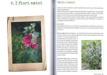 Più orto che giardino. Come coltivare verdure felici e fiori gentili - Simonetta Chiarugi,Camilla Zanarotti - 4