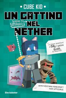 Rallydeicolliscaligeri.it Un gattino sempre più smarrito nel Nether Image