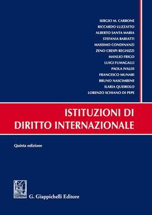 Aboutschuster.de Istituzioni di diritto internazionale Image