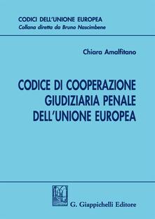 Daddyswing.es Codice di cooperazione giudiziaria penale dell'Unione europea Image