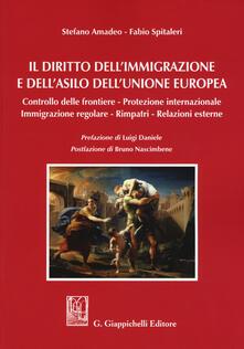 Camfeed.it Il diritto dell'immigrazione e dell'asilo dell'Unione europea. Controllo delle frontiere, protezione internazionale, immigrazione regolare, rimpatri, relazioni esterne Image