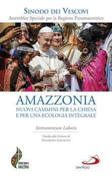 Atomicabionda-ilfilm.it Amazzonia: nuovi cammini per la Chiesa e per una ecologia integrale. Instrumentum laboris Image