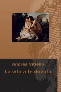 La vita a te dovuta - Andrea Vitiello - copertina