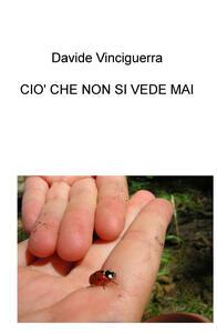 Ciò che non si vede mai - Davide Vinciguerra - copertina