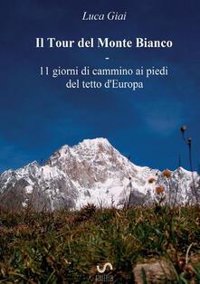 Filmarelalterita.it Il tour del Monte Bianco. 11 giorni di cammino ai piedi del tetto d'Europa Image