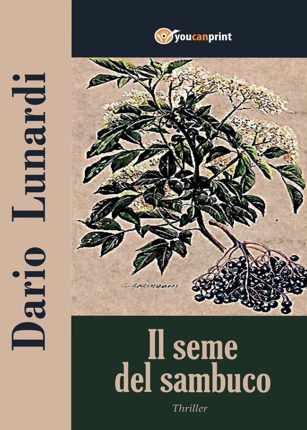 Il seme del sambuco