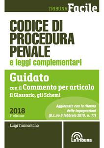 Codice di procedura penale e leggi complementari. Guidato con il commento per articolo, il glossario, gli schemi