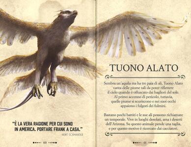 Animali Fantastici E Dove Trovarli Gli Animali Magici Ediz A