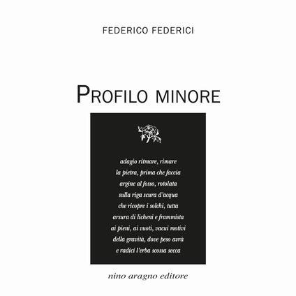 Profilo minore - Federico Federici - copertina
