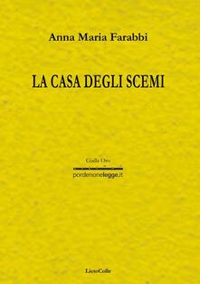 La casa degli scemi - Anna Maria Farabbi - copertina