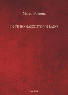 In te ho nascosto un lago - Marco Fortuna - copertina