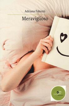 Meraviglioso - Adriana Fabozzi - copertina
