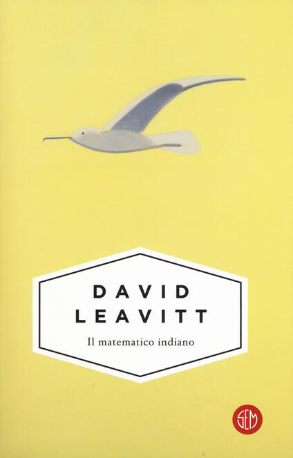 Il matematico indiano - David Leavitt - copertina